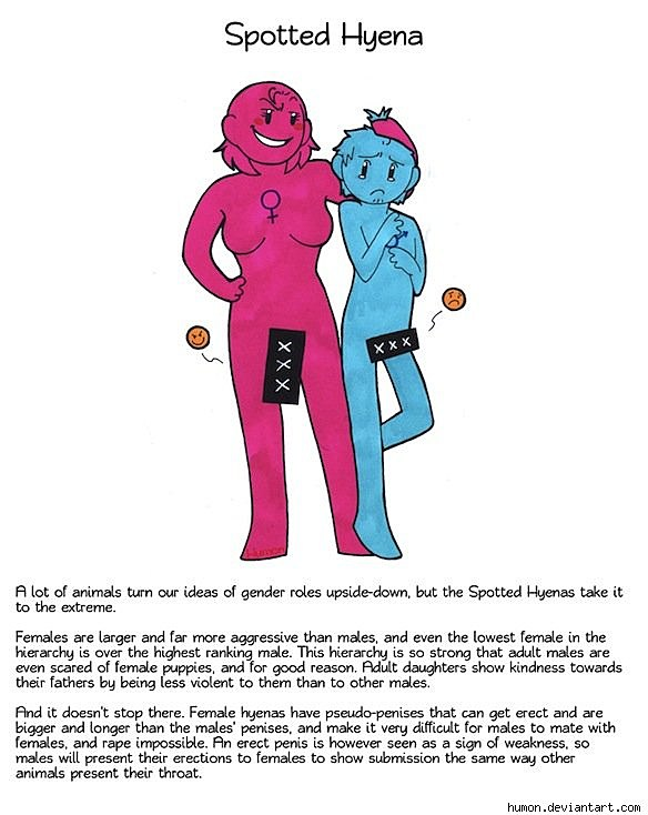 animal sex cartoons Peem-mee.