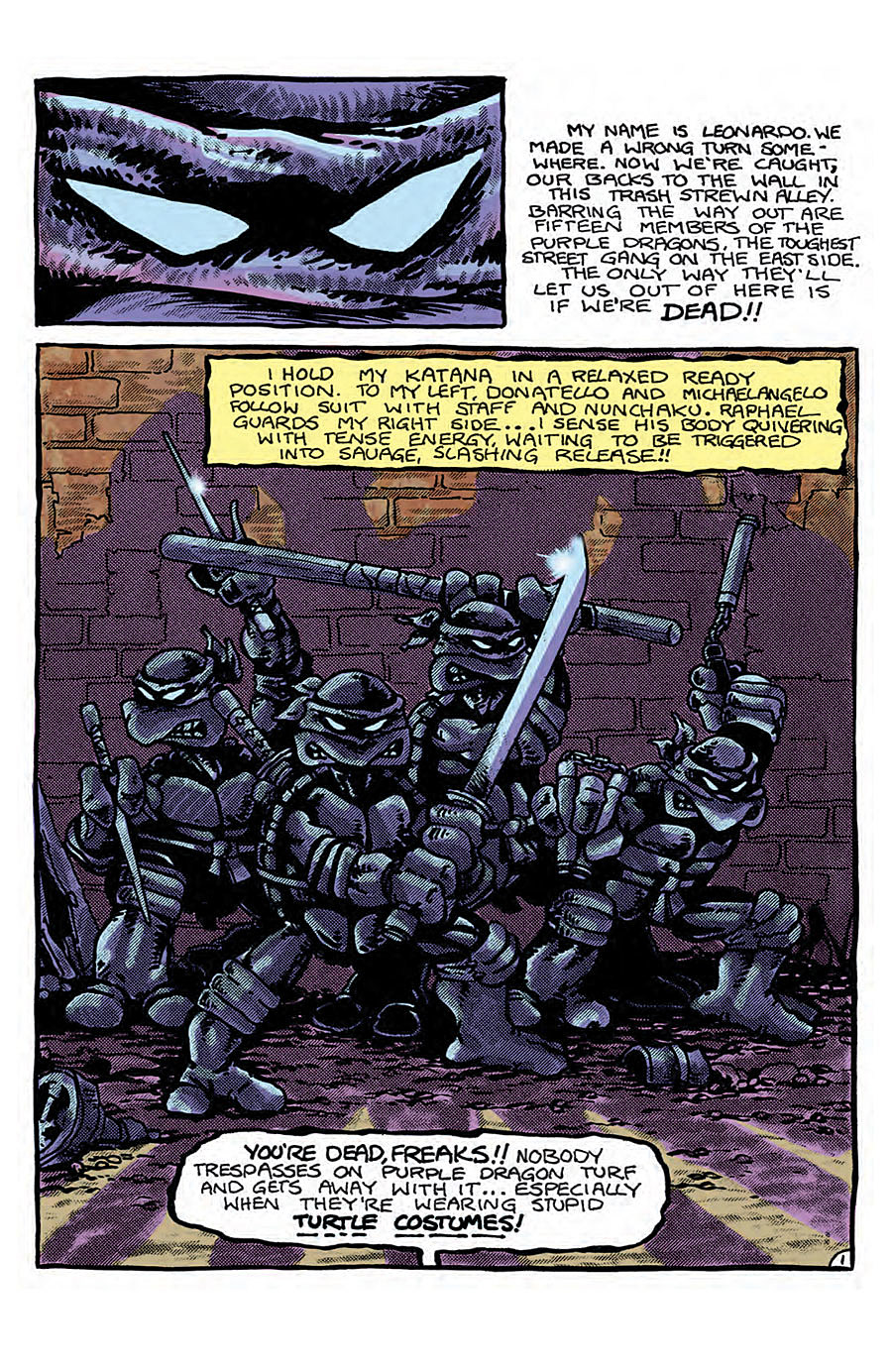 Teenage Mutant Ninja Turtles Color