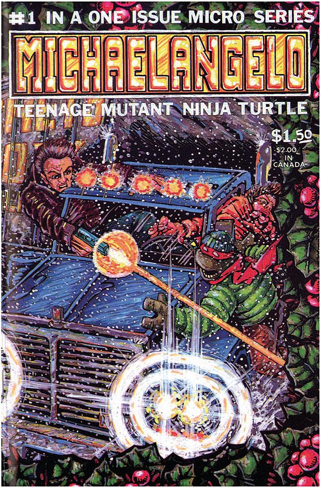 Michaelangelo, Teenage Mutant Ninja Turtle, IDW