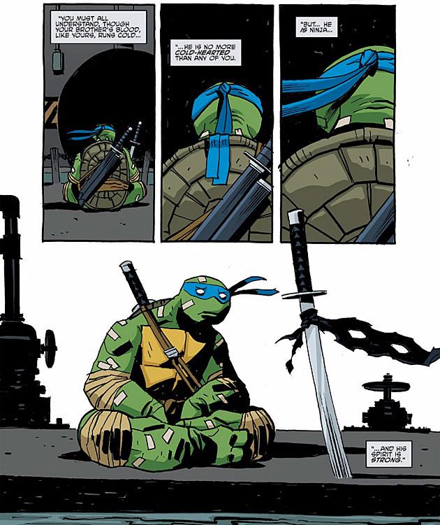 Teenage Mutant Ninja Turtles, IDW